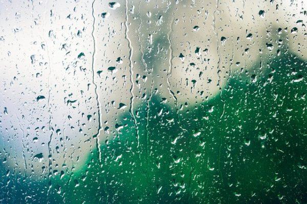 雨、しずく