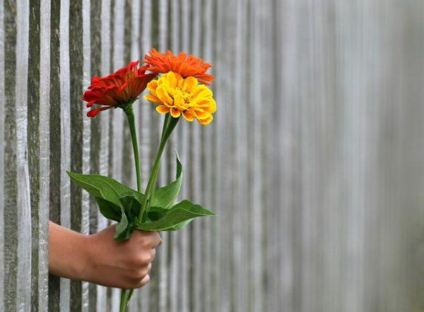 花 差し出す